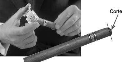 ¿Cómo se fuma un habano(puro) de forma correcta?