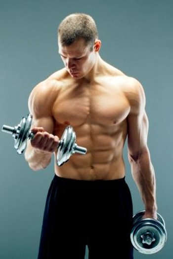 Https Www Muscleandstrength Com Articles Bulk Up Fast Maximize Muscle Building
