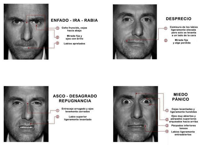 Expresiones faciales. Kinesia. Tim Roth. Lie to me.