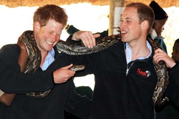 Despedida de soltero del Príncipe Guillermo. Bachelor party, Prince William.
